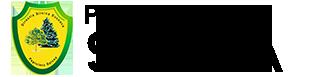 Pepiniera Silvica Salcea Logo